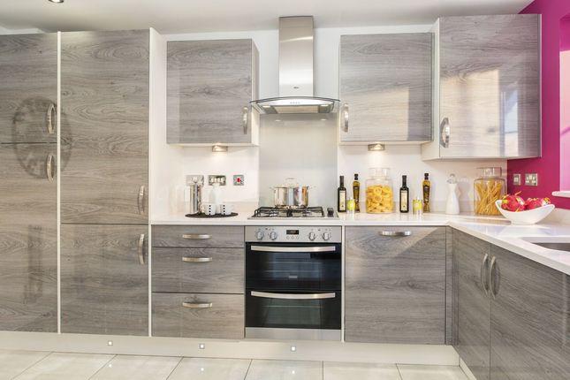 "Thumbnail Semi-detached house for sale in ""Barwick"" at Green Lane, Yarm"