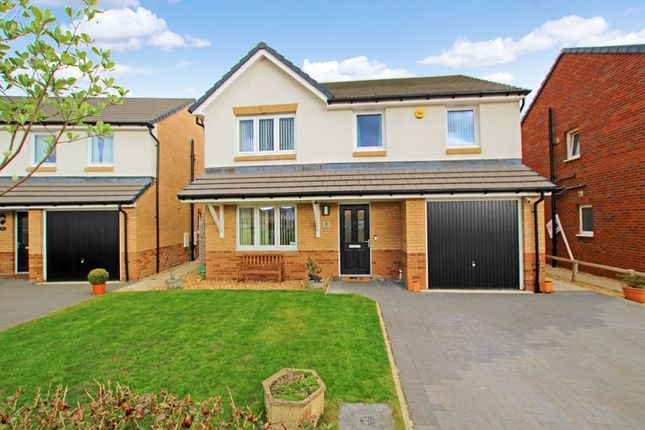 Thumbnail Property for sale in Coney Drive, Motherwell