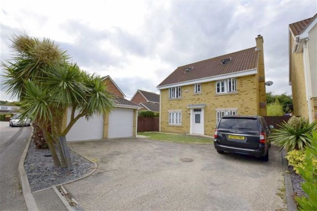 Thumbnail Detached house for sale in Magnolia Close, Canvey Island, Essex