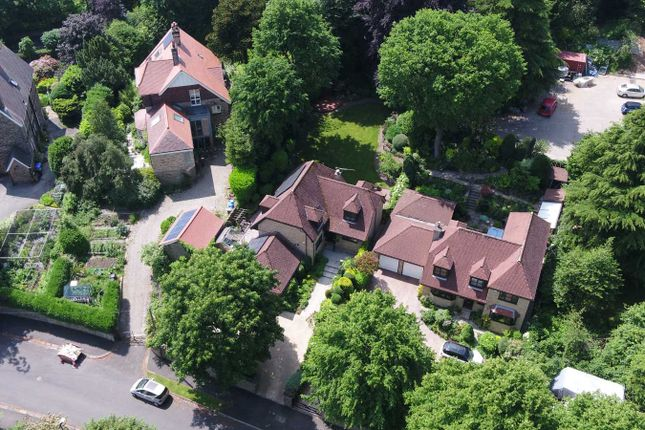 Aerial View of Brincliffe Crescent, Brincliffe, Sheffield S11