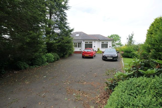 Thumbnail Detached bungalow to rent in Auchincruive, Ayr