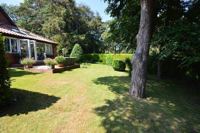 Garden of Lakeside, Primrose Valley, Filey YO14