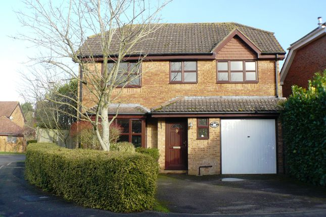 Thumbnail Detached house to rent in Valleymead, Anna Valley