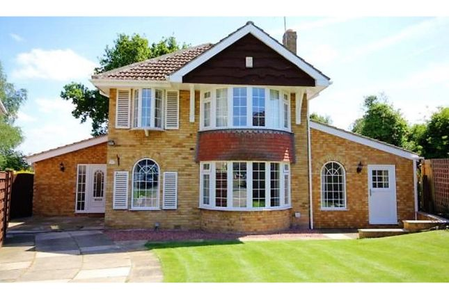 Thumbnail Detached house for sale in The Manor Beeches, York