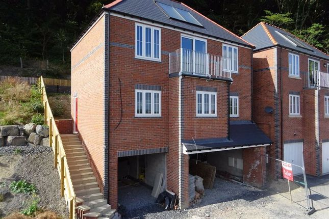 Thumbnail Detached house for sale in Valley View, Hendidley Close, Hendidley Close, Newtown, Powys
