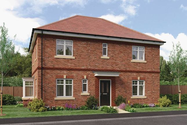 Thumbnail Detached house for sale in 'stevenson', Eyre View, Newbold Road