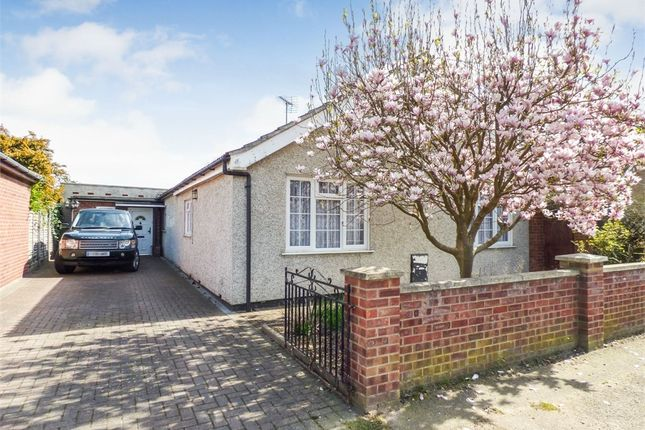 Thumbnail Detached bungalow for sale in Villa Road, Stanway, Colchester, Essex