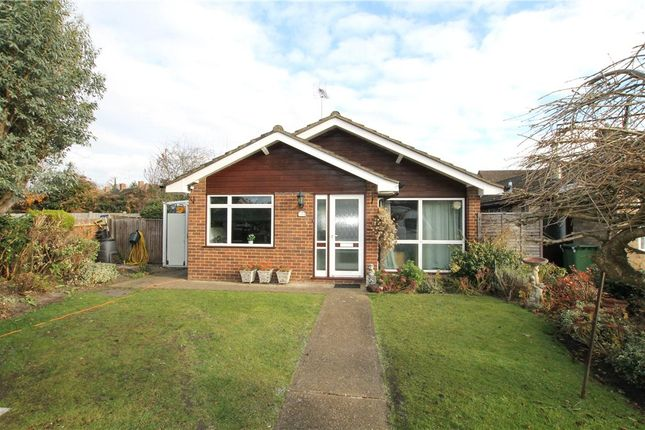 Thumbnail Detached house for sale in Hollybank, West End, Woking, Surrey