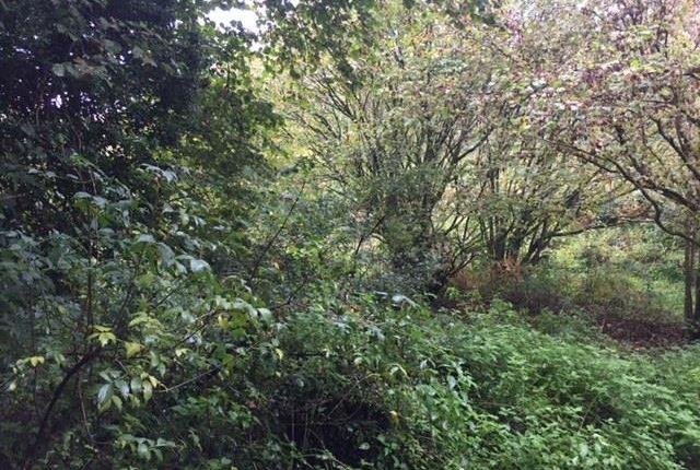 Img_2885 of North Buckland, Braunton EX33