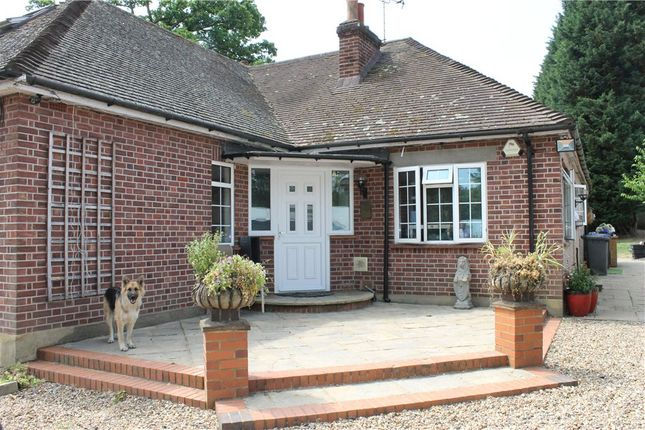 Thumbnail Detached bungalow to rent in Hardwick Lane, Lyne, Chertsey, Surrey