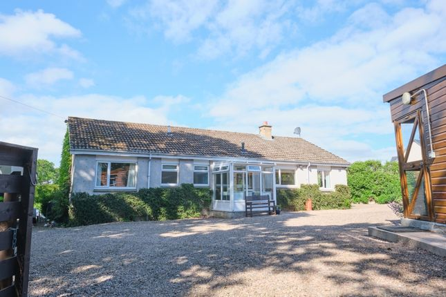 Thumbnail Leisure/hospitality for sale in Duns, Scottish Borders