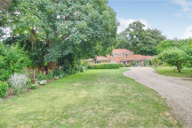 Thumbnail Detached house for sale in Unthank Road, Norwich