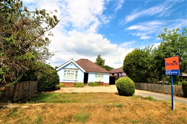 Thumbnail Detached bungalow to rent in Brook Lane, Sarisbury Green, Southampton, Hampshire