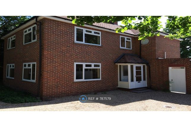 Thumbnail Detached house to rent in Hempstead Road, Watford