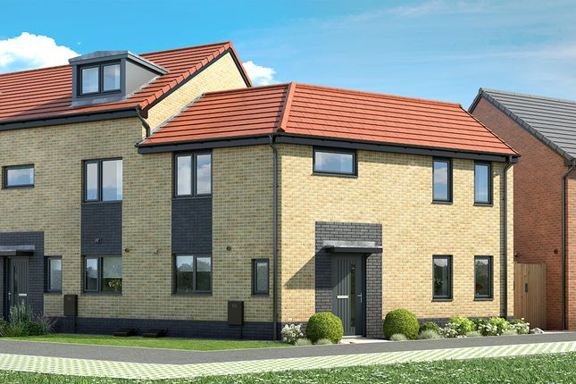 "Thumbnail 3 bed property for sale in ""The Ambrose"" at Hawthorn Avenue, Hull"