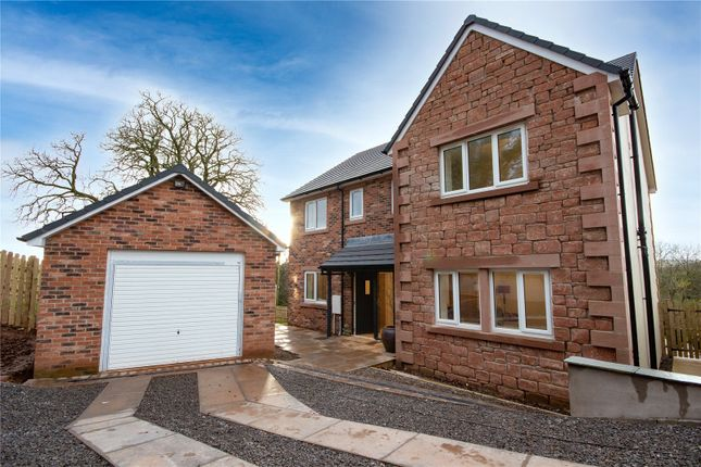 Thumbnail Detached house for sale in Culgaith, Penrith