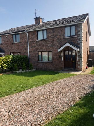 Thumbnail Semi-detached house to rent in The Brambles, Randalstown