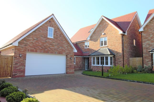 Thumbnail Detached house for sale in Grays Close, Clifton, Shefford, Beds
