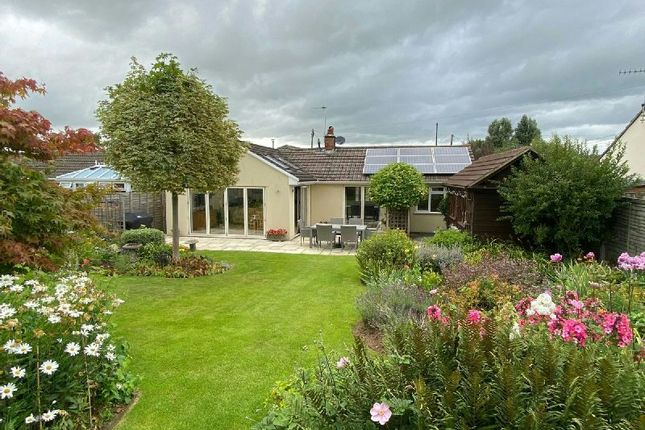 Thumbnail Detached bungalow for sale in Greenhill Road, Sandford, Winscombe