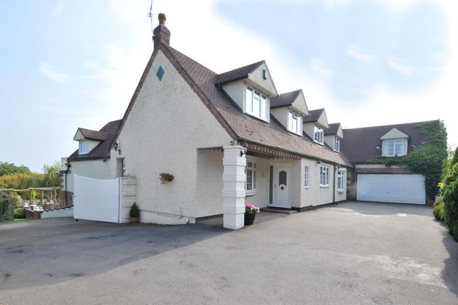 Thumbnail Detached house to rent in Carabella, Callow Hill