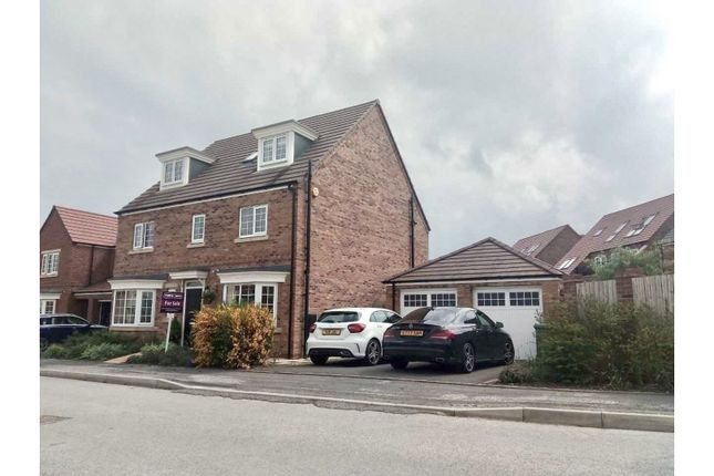 Thumbnail Detached house for sale in Mulberry Avenue, Beverley