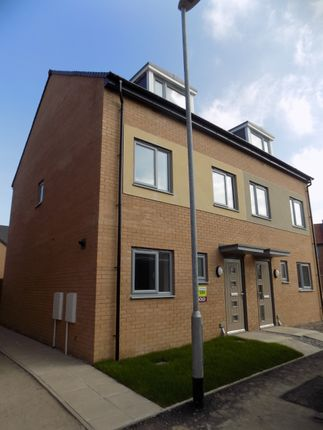 Thumbnail Semi-detached house to rent in Sundew Court, Darlington