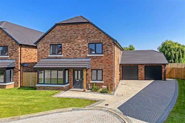 Thumbnail Detached house for sale in Earl Close, Clifton, Bedfordshire