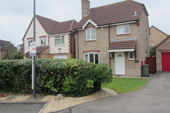 Thumbnail Detached house to rent in Foxfield Avenue, Bradley Stoke, Bristol