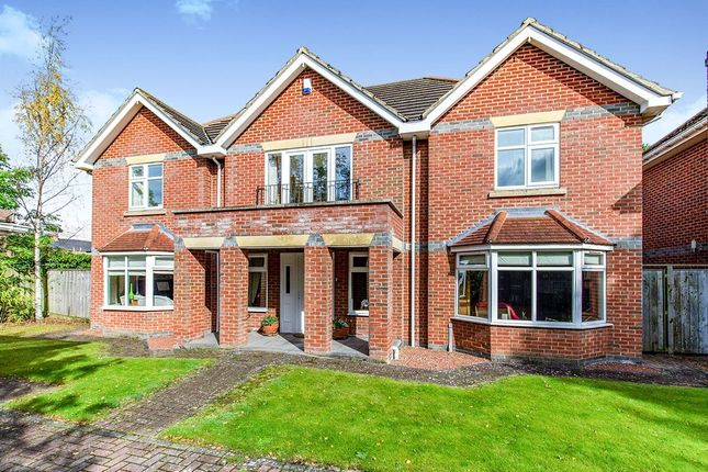 Thumbnail Detached house to rent in South View, Eaglescliffe, Stockton-On-Tees