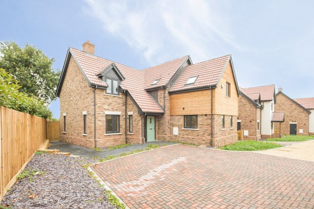 Thumbnail Detached house for sale in Pedley Lane, Clifton, Shefford