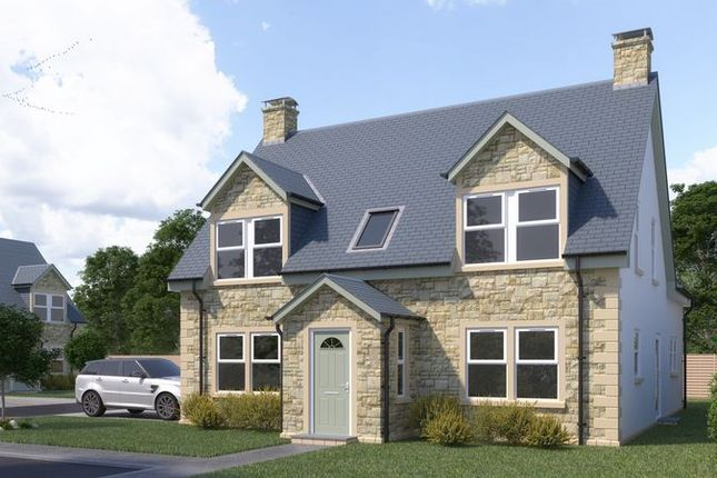 Thumbnail Detached house for sale in Manse Road, Biggar