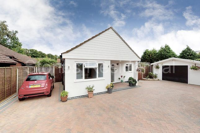 Thumbnail Detached bungalow for sale in Newlyn Close, Bricket Wood, St.Albans