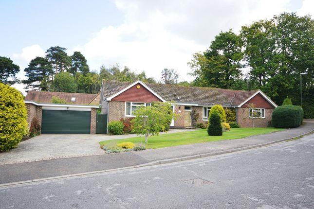 Thumbnail Detached bungalow for sale in Hillside Walk, Storrington