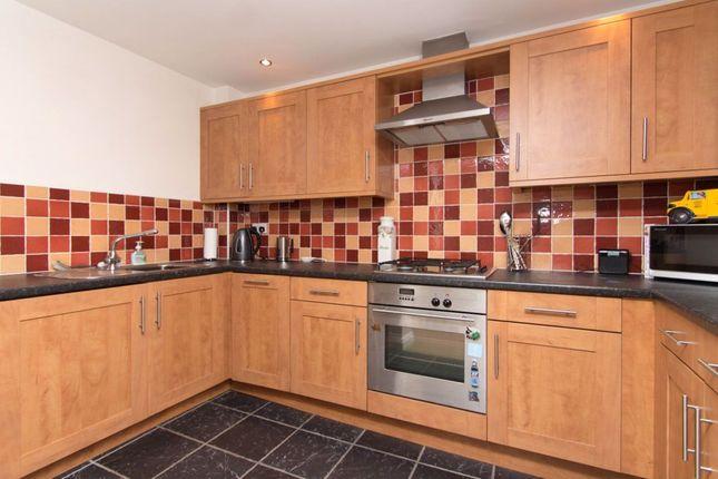 Thumbnail Flat to rent in Newmarket Court, Tavistock, Devon