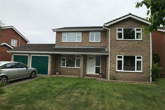 Thumbnail Detached house to rent in Thackers Way, Market Deeping, Peterborough, Lincolnshire