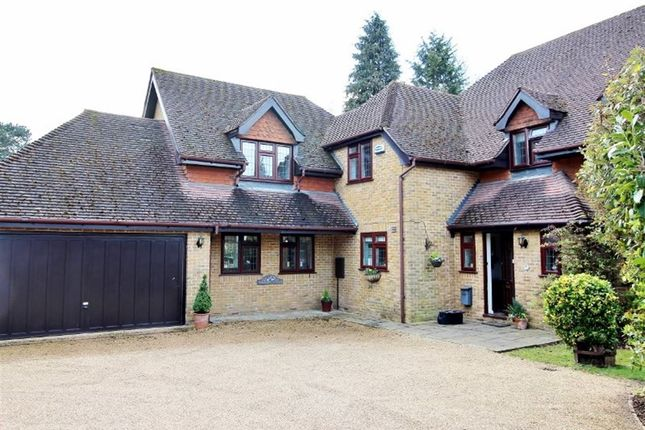 Thumbnail Detached house to rent in Winchester Grove, Sevenoaks