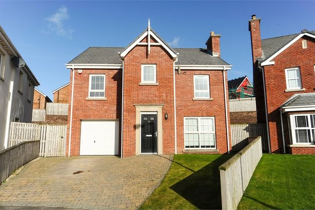 Thumbnail Detached house for sale in Millreagh Avenue, Dundonald, Belfast, County Down