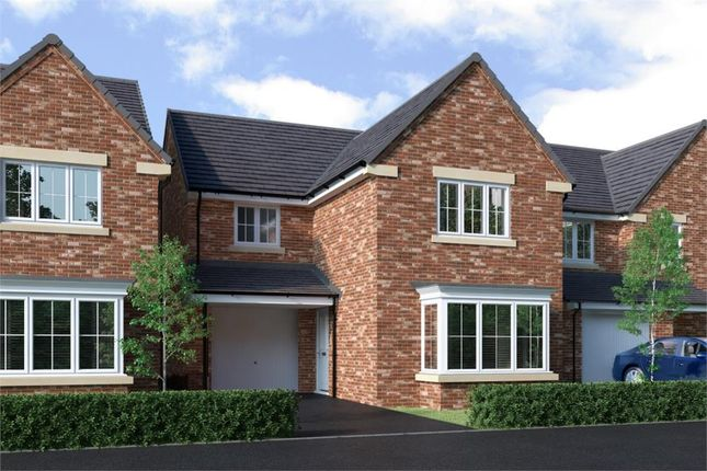 """Thumbnail Detached house for sale in """"Malory"""" at Lammack Road, Blackburn"""
