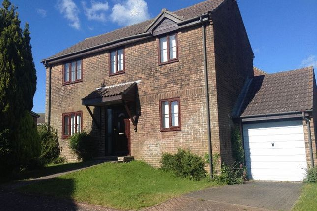 Thumbnail Detached house to rent in Gatcombe Close, Dorchester