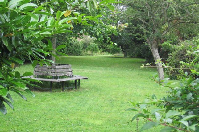 Powderham Resident Garden