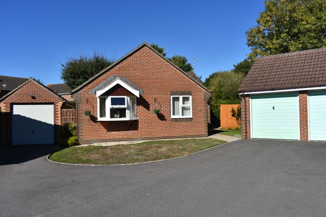 Thumbnail Detached bungalow for sale in Dashwood Close, Sturminster Newton