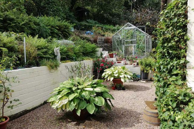 Garden of Gwenllian Terrace, Treforest, Pontypridd CF37