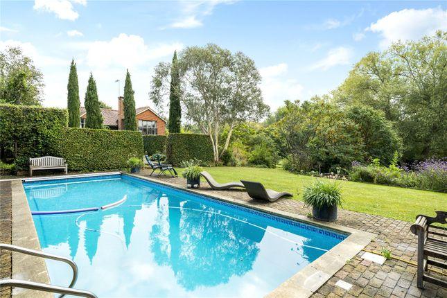 Swimming Pool of The Borough, Brockham, Betchworth, Surrey RH3