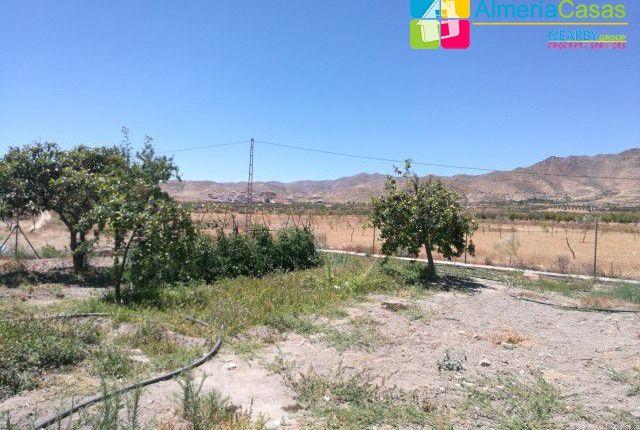 Foto 18 of Uleila Del Campo, Almería, Spain
