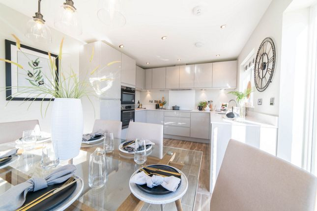 Thumbnail Detached house for sale in Elm Park, Matford