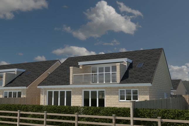 Thumbnail Detached bungalow for sale in The Diamond II, Paddock View, Hambleton