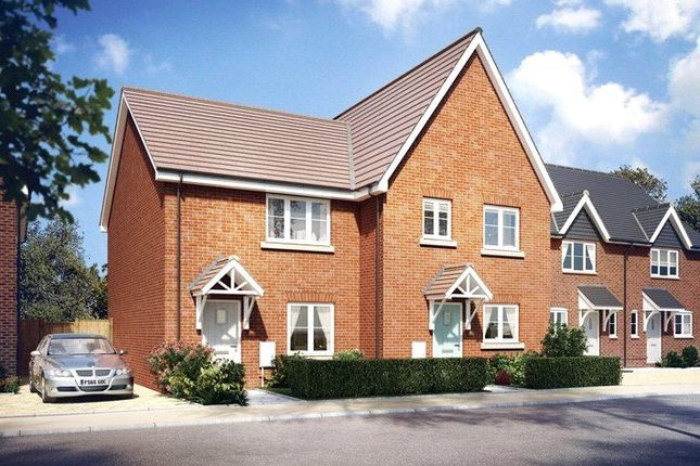 Thumbnail Semi-detached house to rent in Merevale Close, Daventry, Northamptonshire