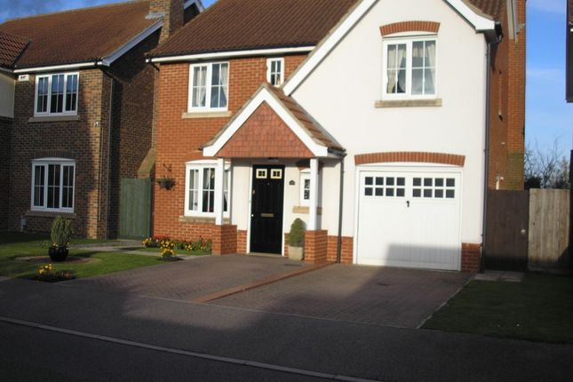 Thumbnail Detached house to rent in Sage Close, Biggleswade
