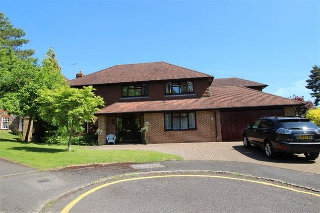 Thumbnail Detached house to rent in White Friars, Sevenoaks