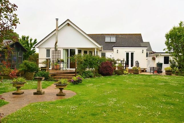 Thumbnail Bungalow for sale in Warborough Road, Churston Ferrers, Brixham